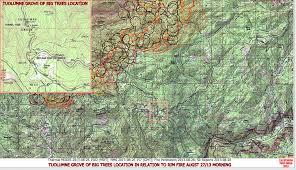 cfn california fire news cal fire news yosemite area