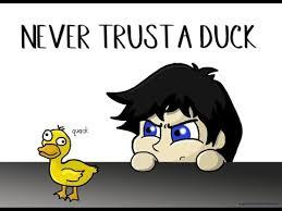 Meme Duck - savage duck attack warning dank memes youtube