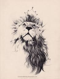 image result for on lions