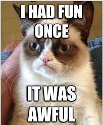 Grumpy Cat Meme I Had Fun Once - grumpy cat meme i had fun once 28 images 25 best memes about