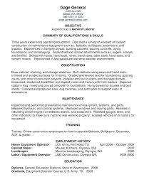 general resume summary of qualifications exles for resume job resume summary exles lidazayiflama info
