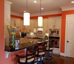 Small Kitchens Designs Pictures 25 Contemporary Kitchen Design Inspiration Orange Walls Gray