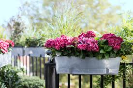 Gardening Ideas For Small Balcony by Small Balcony Gardening Balcony Gardening An Oasis In The Sky