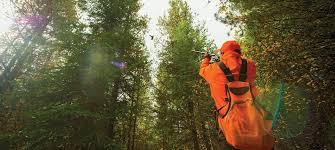 hunting fishing u0026 survival tips gun reviews field u0026 stream