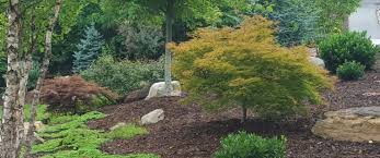 Superior Lawn And Landscape by Superior Landscaping Asheville Nc Lawn N Order