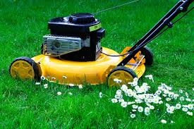 lawn mower repair lawn and lawnmowers