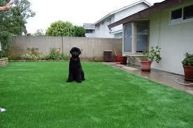 pet turf chula vista dog turf chula vista artificial grass