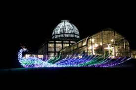 Gardenfest Of Lights Wonder Wednesday 4 Happy Birthday To Me Wings Worms And Wonder