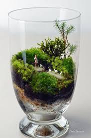 glass cup terrarium ideas mini garden garden ideas design ideas