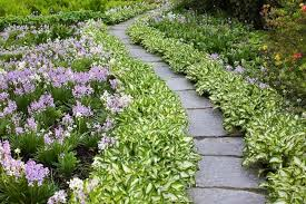 Garden Path Edging Ideas A Lovely And Low Care Garden Path