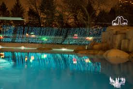 Columbus Zoo Lights Hours by Lincoln Park Zoo Announces 23rd Annual Zoolights Events And