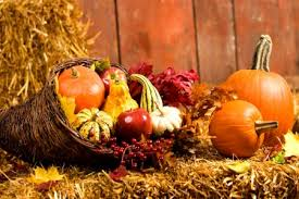 autumn harvest photography abstract background wallpapers on