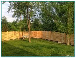 dog fence installation cost 2