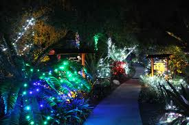San Diego Botanical Gardens Encinitas Garden Of Lights Sd Botanic Garden S Winter