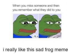 Sad Frog Meme - when you miss someone and then you remember what they did to you i