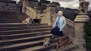 queen elizabeth dog five facts about corgis favourite dog of britain s queen elizabeth