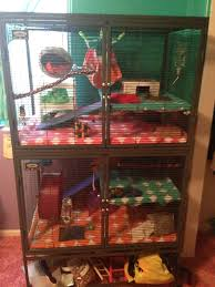 Petsmart Small Animal Cages Fancy Rat The Rat Lady Page 4