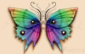 butterfly wings by piucca on deviantart