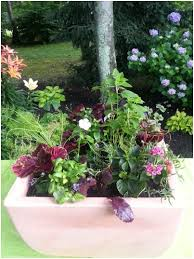 a vegetable and herb planter pretty enough for the front door
