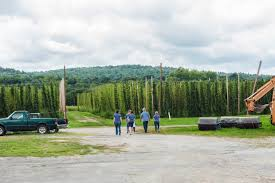 four star farms leading a hops revolution in new england boston