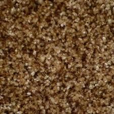 premier stainmaster penniston carpet hardwood laminate tile