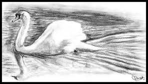 pictures simple nature pencil drawings drawing art gallery