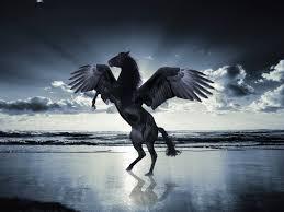 horse with wings unicorns u0026 pegasus pinterest horse pegasus