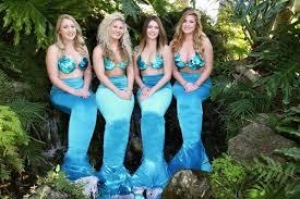 mermaid shows weeki wachee springs park
