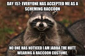Jabba The Hutt Meme - day 157 everyone has accepted me as a scheming raccoon no one has