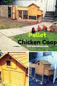 Building Backyard Chicken Coop Backyard Chickens Pallet Coop Home Outdoor Decoration