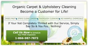 organic carpet upholstery cleaning nyc oganic rug cleaning experts