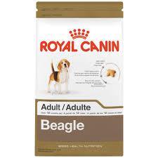 amazon com royal canin breed health nutrition beagle dry