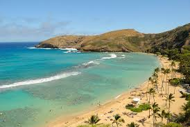 Hawaii travel planning images What you need to know before going to hawaii jpg
