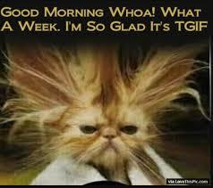 Thank God Its Friday Memes - i too am glad it s thank god it s friday terriblefacebookmemes