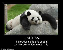 sad panda memes meme center