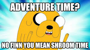 Meme Adventure Time - adventure time no finn you mean shroom time jake the dog