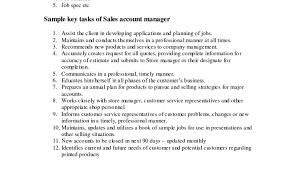 Account Executive Job Description For Resume Sales Account Manager Job Description Account Manager Job