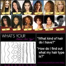 Hair Types by Hair Types Hergivenhair