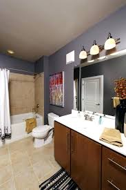 bathroom decorating ideas for apartments bathroom decorating ideas budget biddle me