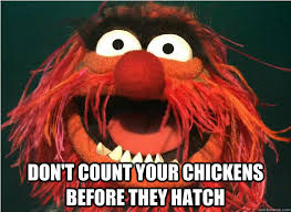 Don Count The Chicken Before They Hatch Don T Count Your Chickens Before They Hatch Advice
