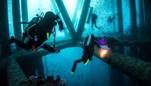 New Jersey snorkeling images Padi scuba diving certification in nj scuba diving classes jpg
