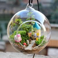 wholesale glass globe terrarium buy cheap glass globe terrarium