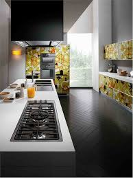 sumptuous graphic artwork floral patterns modern kitchen cabinets