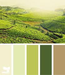 beige green 75 best color from life images on pinterest color palettes color