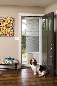 Larson Secure Elegance by 25 Best Larson Storm Doors Images On Pinterest Larson Storm