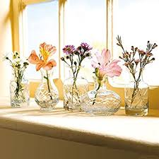 Small Glass Vases Wholesale Amazon Com Small Cut Glass Vases In Differing Unique Shapes Set