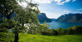 norway fjords visitbergen com