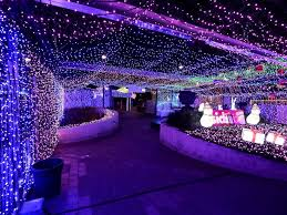 clinton pa christmas lights australia brightens with record setting christmas lights display
