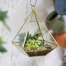 golden four surfaced diamond glass geometric terrarium succulent