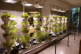 tower gardens for greenhouses